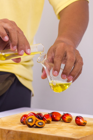 biofuel: pure palm oil pouring into a test tube glass  Stock Photo