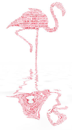 wader: flamingo text clouds with water reflection on isolated background