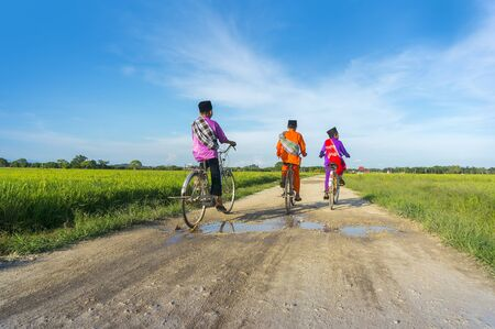 trois garçon à vélo dans les rizières pendant le ciel bleu Banque d'images