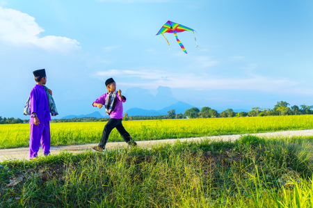 flying kite: boys flying a kite in a paddy field during blue sky