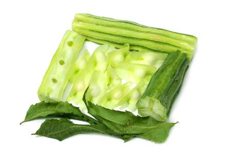 sonjna: Sliced Moringa Oleifera over white background Stock Photo