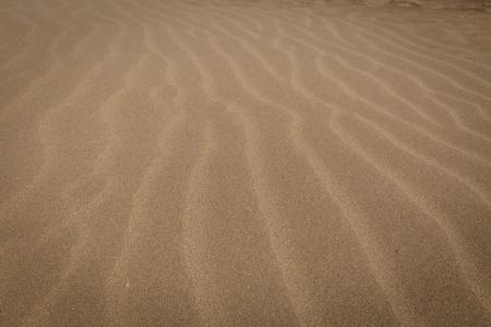 sandy: sandy beach Stock Photo