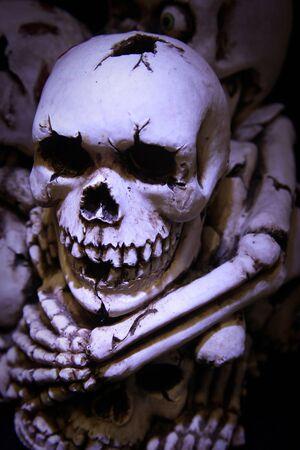 Skulls and bones photo