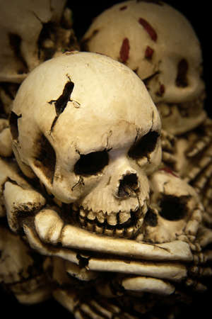 Skulls and bones Stock Photo