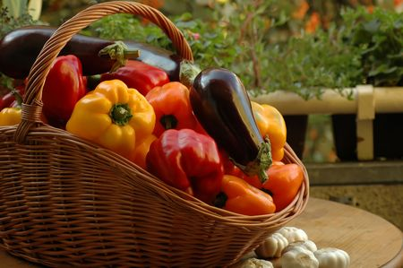 vegetables on a table in a garden