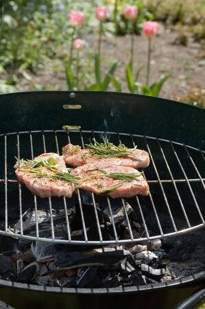 steaks with seasonings on barbecue grill in a garden