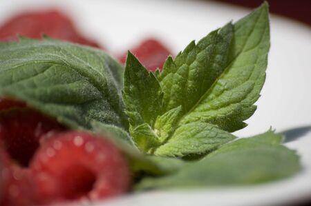 mint and fresh raspberries on a plate