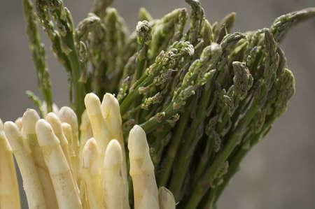 fresh white and green asparagus