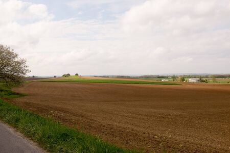 contryside: Nice landscape in a country side - freedom concept Stock Photo
