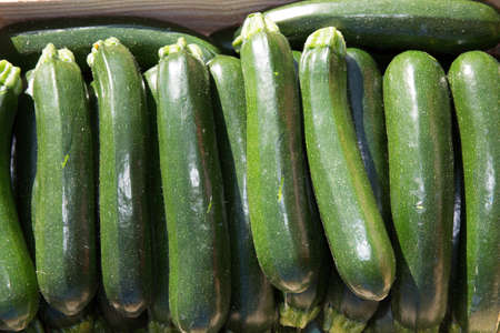 courgettes: Close up of fresh courgettes or zucchini