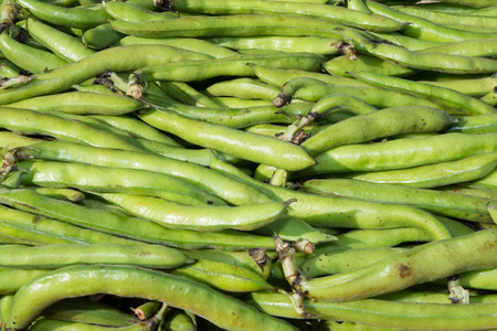 haricot vert: small and slender green beans (haricot vert) on a wood Stock Photo