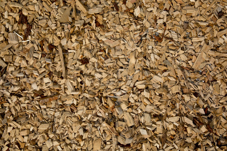 sandalwood: Background with beige and brown wood chips