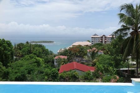whitsundays: Beautiful landscape , sea, island and palm trees