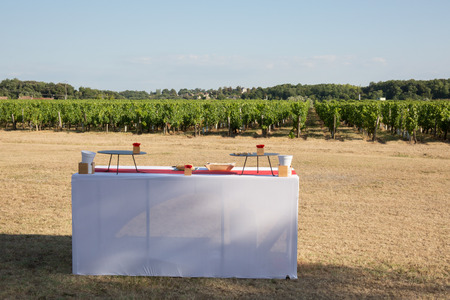 venue: Decor, and decorations at a wedding reception at an outdoor venue vineyard winery