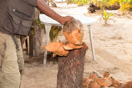 hatchet man: Man chopping top of coconut to sell refreshing coconut milk to tourists Stock Photo