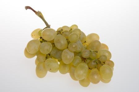 Raisins verts frais isolé sur blanc-Sauvignon Banque d'images - 49480233