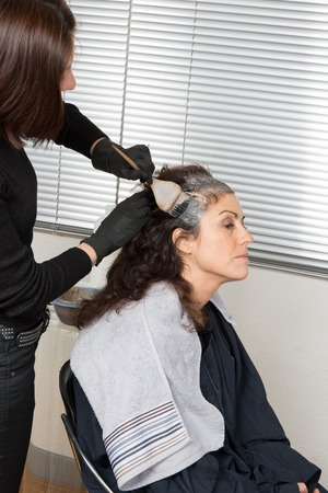 hairtician: Highlighting woman clients hair in a  beauty parlor hairdressing salon Stock Photo
