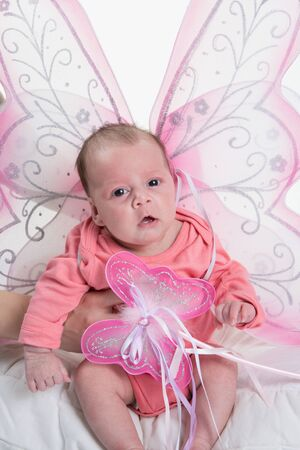 restful: A beautiful baby girl with cute facial expression sitting wit fairy wings
