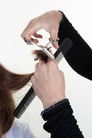 hair stylist: Hands of a woman professional hair stylist Stock Photo