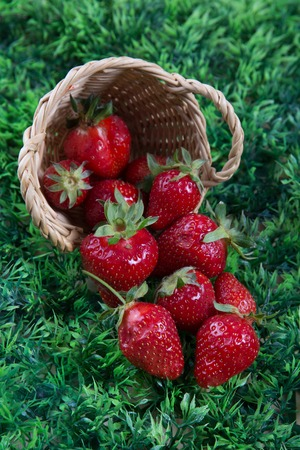 full willow: Delicious Strawberries in small basket under green grass background Stock Photo