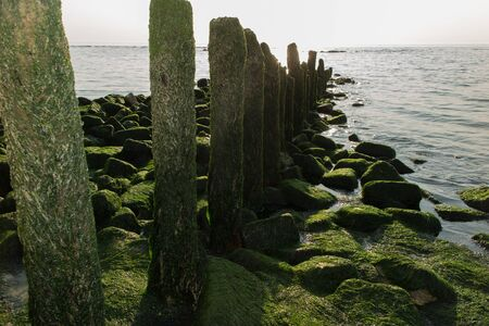 dreary: A grey dreary day with a view of wooden algae covered post fence. Stock Photo