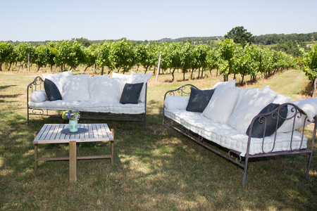 iron curtain: Iron sofa with curtain in the middle of the vineyards.