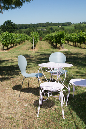 patio furniture: iron patio furniture and vineyard on the background