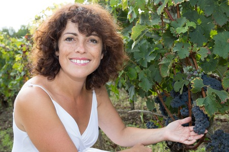 winemaker: Woman winemaker with grapes in a vineyard Stock Photo