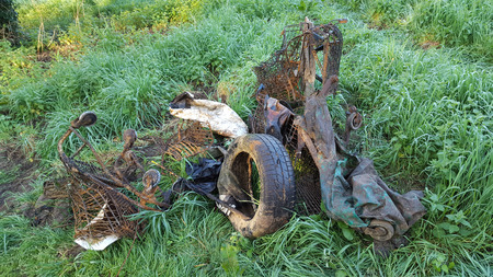 Rubbish Dump wild in nature
