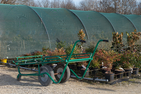 nurseryman: Wagon with plants in the commercial garden center