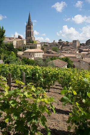 Vineyards at Saint Emilion city center, France