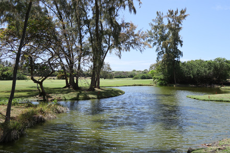 Panorama view of Golf Course turf beautiful green with lake Imagens