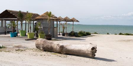 restaurant terrace straw beach umbrellas and palm trees