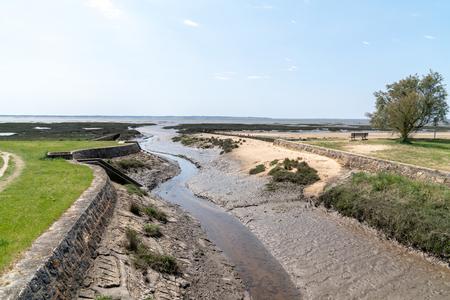 river go to atlantic ocean in Cassy Lanton in Bassin d'Arcachon in France