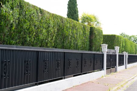 green hedge Metal Fence of residential house luxury