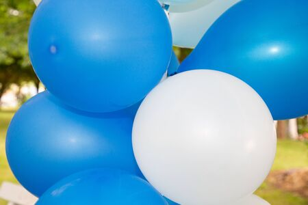 Blue and white party balloons on green outdoor background