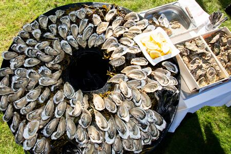 big large tasty oysters on the plate on round table in party in Cap Ferret Arcachon bay France 免版税图像