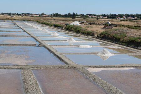 Harvest salt marshes Noirmoutier in Vendée Pays de Loire France