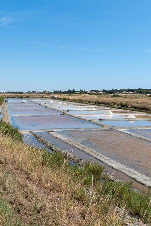 salt marsh in the Ile de Noirmoutier France, EU, Europe Stock fotó