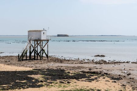 beautiful sandy beach with a fisherman hut on the island of Aix Charente maritime France