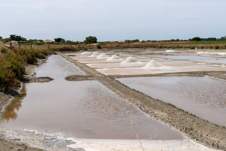 salt marsh and salt picking in Noirmoutier Isle in Vendée France