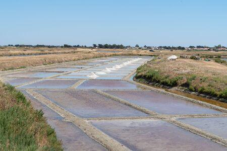 Harvesting salt in salt marshes Noirmoutier Vendée in France Pays de Loire