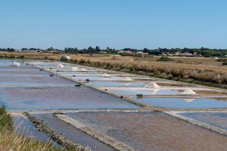 French traditional salt fields on island of Noirmoutier in France