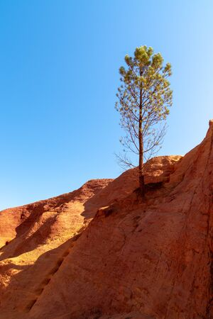 ochre rocks of Colorado Provençal with single tree pine Stockfoto