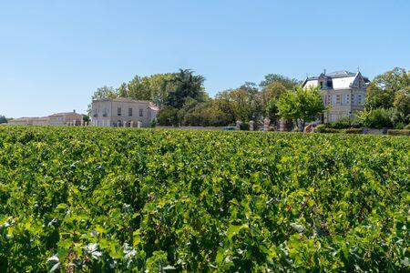 Chateau vineyard in Margaux Médoc Bordeaux France