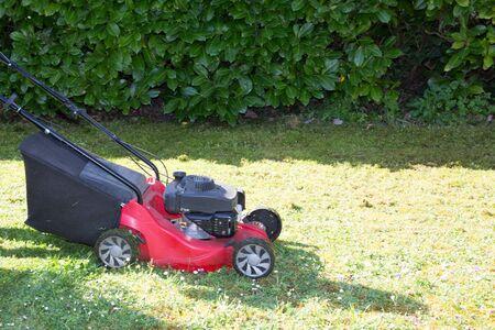 Lawn mower on green lawn home garden