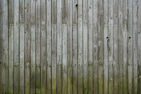 Full frame wood wall wooden background