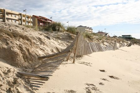 wooden palisade barrier to protect the dune cord against erosion