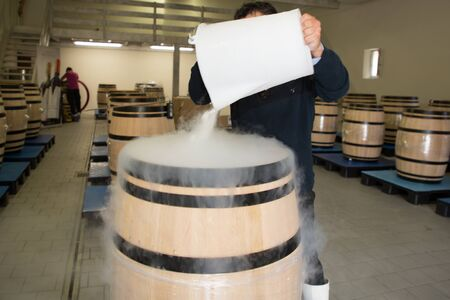 wood barrel winery with red grapes man put dry ice smoke to refresh in wine cellar