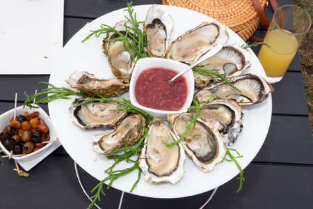 Fresh oysters in white plate in top view in Arcachon France